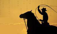 data-wrangeler_cowboy_1-200x122